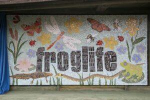 Froglife mural by Mahemuda Arsalani